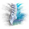 California Spine @e Institute, Inc.